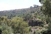 The view/Las vistas