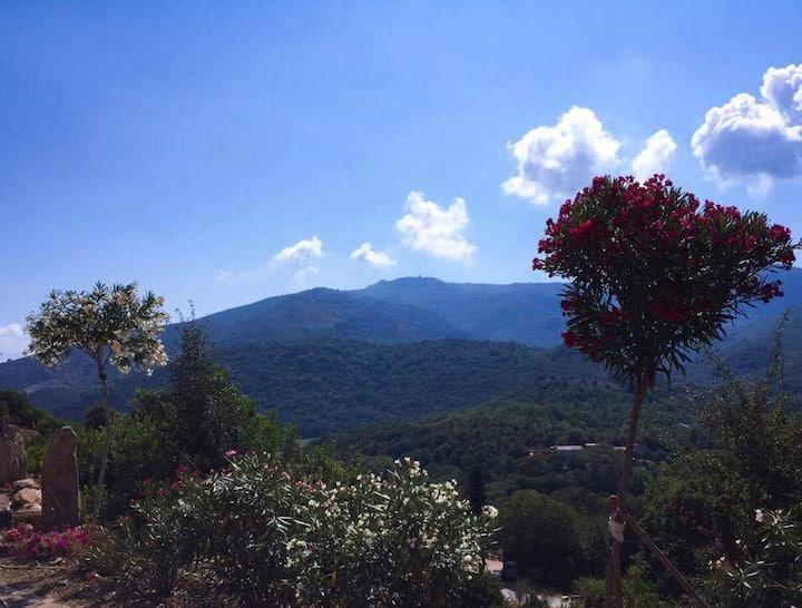 CHALET entier en haute Corse (A MO CASA IN LEGNU)