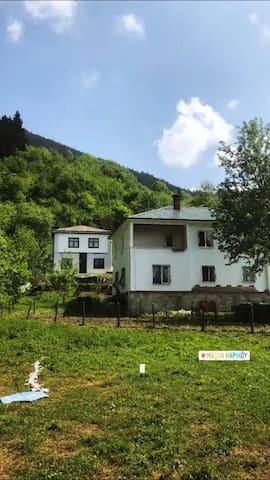 Trabzon'da Doğa ile iç içe bir tatil