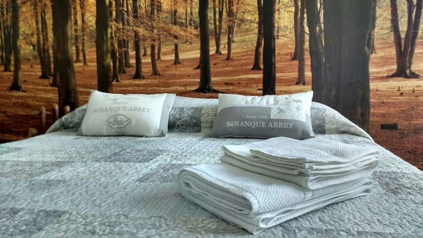Deliziosa stanza doppia con bagno privato - Parma - Bed & Breakfast