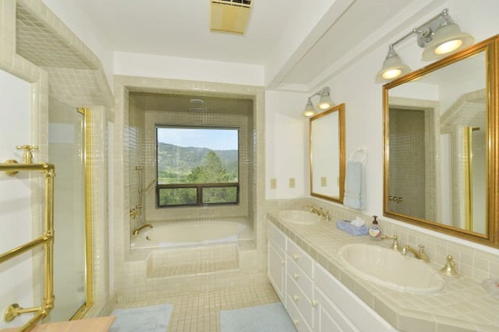 Master Bathroom with shower and large tub overlooking the vineyard