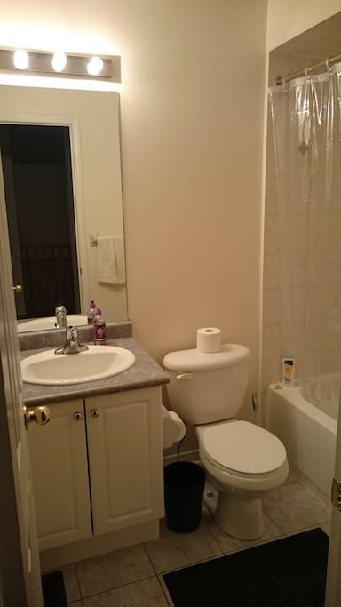 Private bathroom (right beside bedroom).