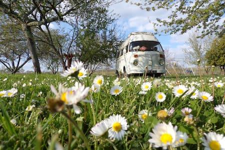 Superbe van aménagé dans un camping écologique - Monestier - Wohnwagen/Wohnmobil