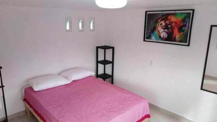 Habitación 2 personas 1 cama. Tequila Jal Centro.