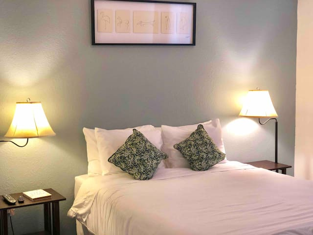 Cozy Condo Walking Distance to Amway Arena