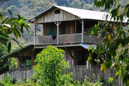 Sarah's Jungle Farm Lodge