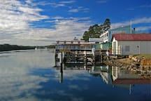 Fisherman's Wharf is an easy 15 min walk away