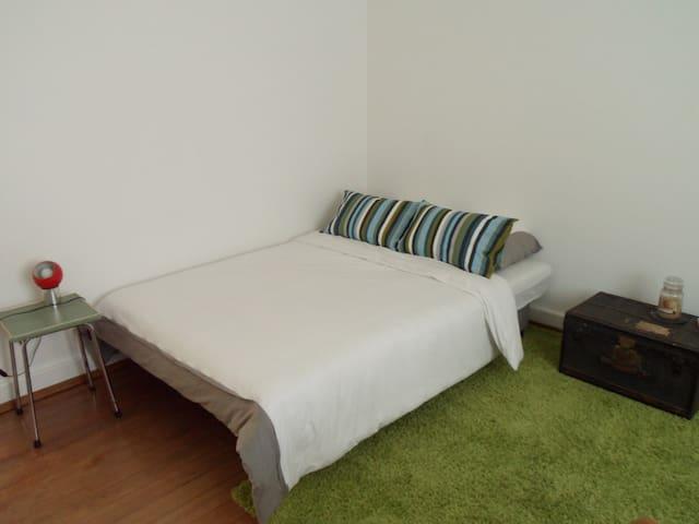 Private single room in Basel - Basel - Huoneisto