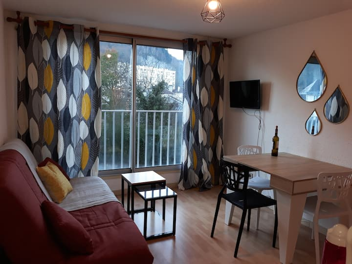 """ Le Lérosyl"" Appartement Lourdes avec parking"