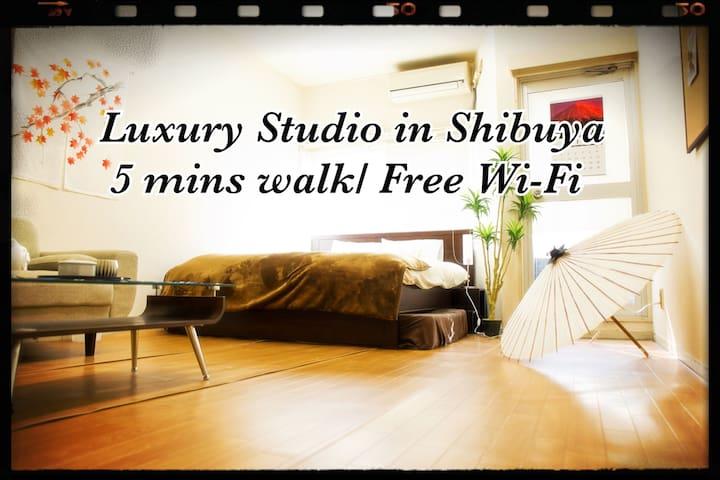 MODERN LUXURY SHIBUYA APT/3min - Shibuya-ku - Apartment