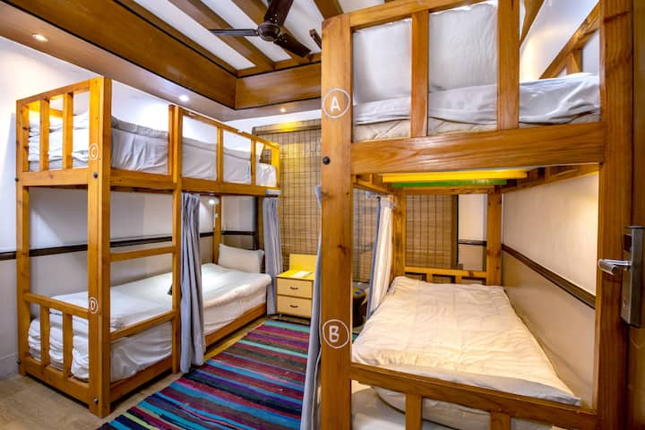 Shared 4 Bed Mixed Dorm Shangri-la Boutique Hotel