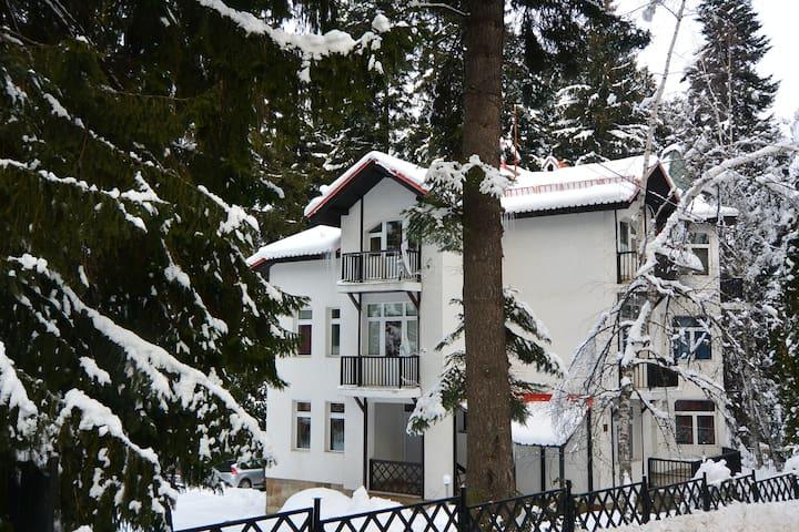 Villa Elena Rooms