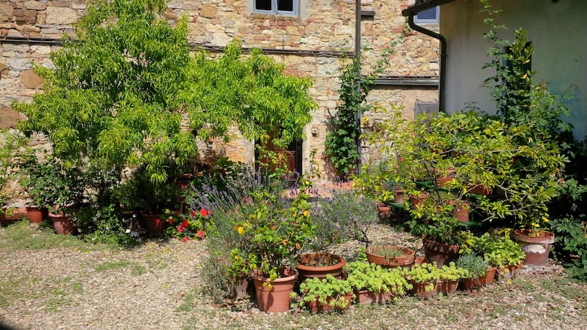 Garden house with pool Tuscany - Pieve A Presciano - Apartment