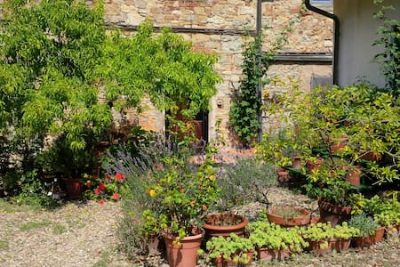 Garden house with pool Tuscany - Pieve A Presciano - Lejlighed