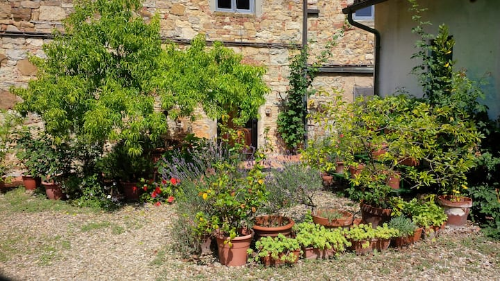 Garden house with pool Tuscany