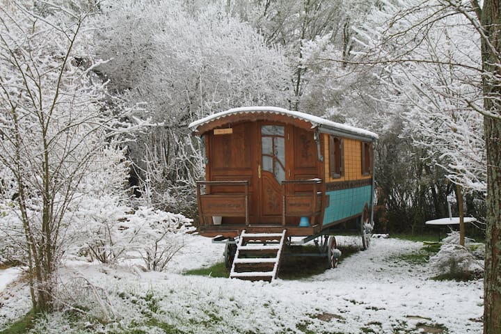 Gyspy Caravan with sauna & wellness
