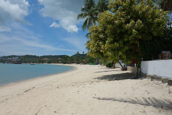 The beach, just meters from here