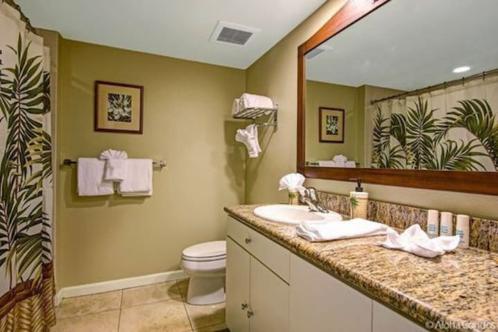 Private bathroom with bathtub /shower combo