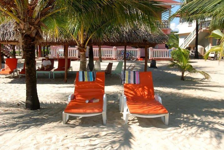 Beachfront,Ocean view 'studio apt' w/ bicycles- MM - Placencia - Apartment