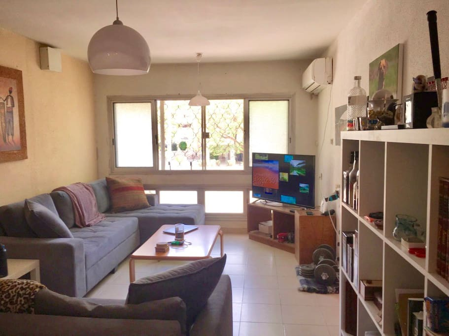 "Large living room with a full wall of windows, lots of natural night, 49"" smart television with AppleTV."