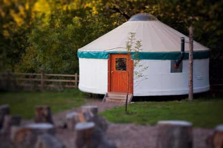 Large Contemporary Yurt in Devon Woodland