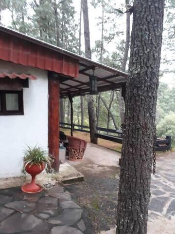 Cabaña Los Ñudos Juanacatlán