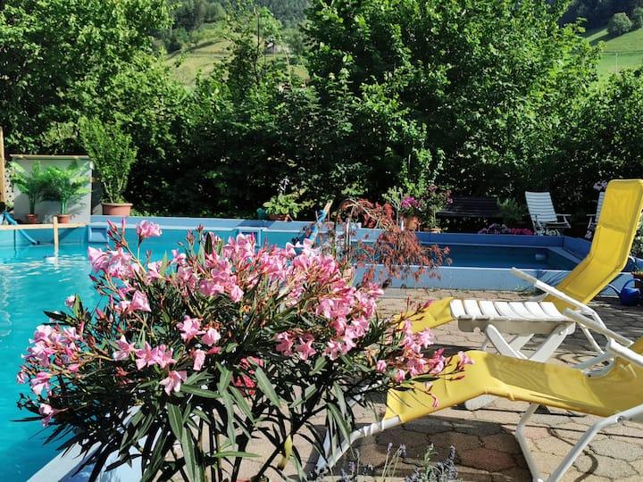 große Wohnung mit Pool am Wanderweg im Schwarzwald