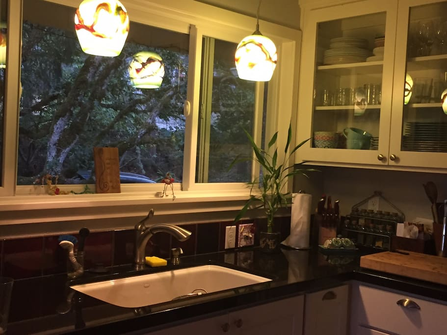 Galley Kitchen, you can see wild turkeys in the yard from this window:)