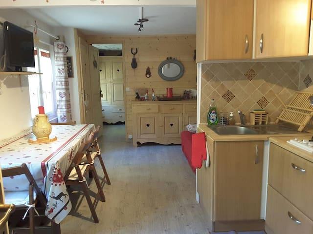 Bel appartement à la montagne - Saint-Vincent-les-Forts - House