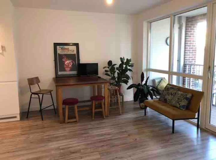 Spacious, modern 1 Bedroom Apartment nr O2 & ExCel
