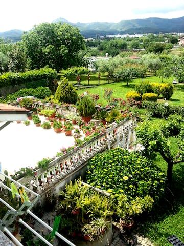 25kmdalla capitale immersi nel verde dei castelli - San Cesareo - Apartmen