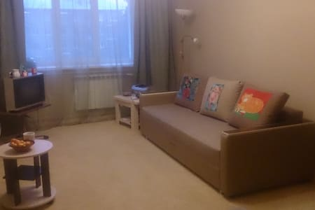 Cozy and comfortable  flat near the center - Novosibirsk