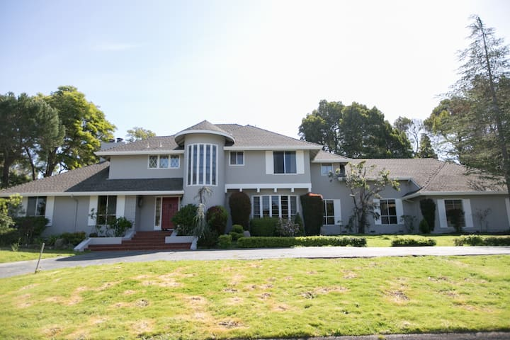 Beautiful 6BR Pool House in Hillsborough Near SFO - Hillsborough - House