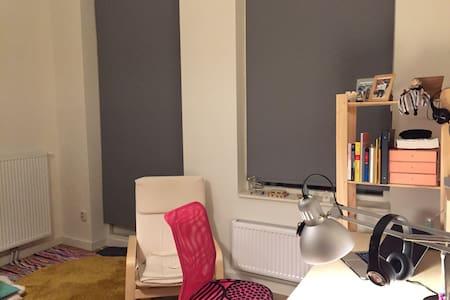 Nice and cozy self-containing room - Groningen - Huoneisto