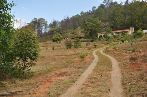 Dale View Self Catering Cottage in Nyanga