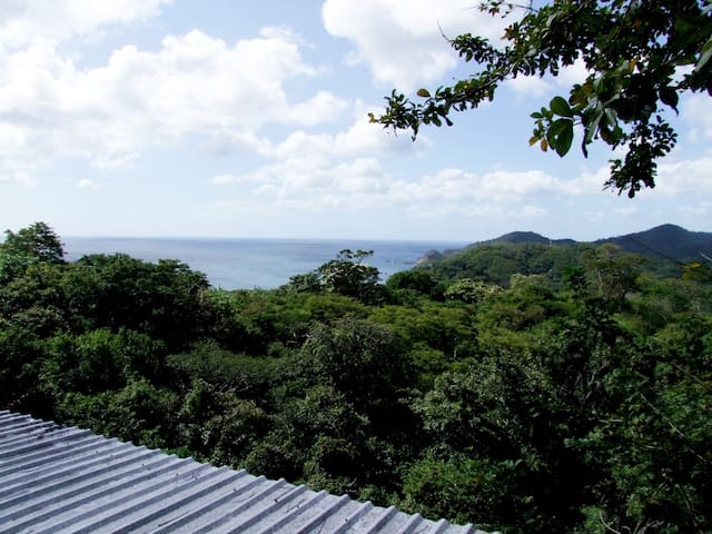 As soon as you arrive you can contemplate the view of the jungle and the ocean