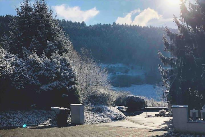 Ferienwohnung am Waldrand in Plettenberg/Tanneneck