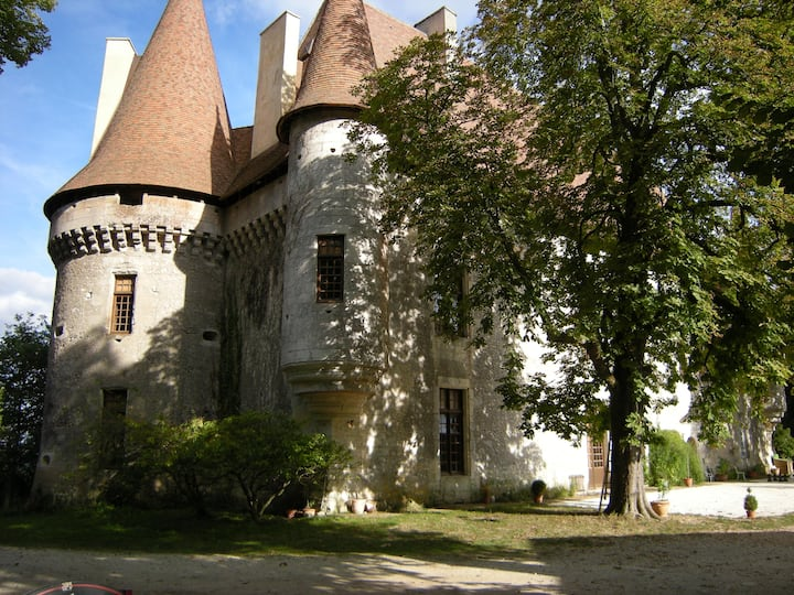 A castle in Périgord with traditional interior XVI