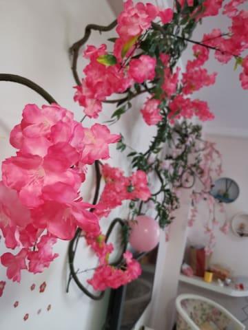 樱树下无人情趣公寓,私密,安全,快乐,单身勿进