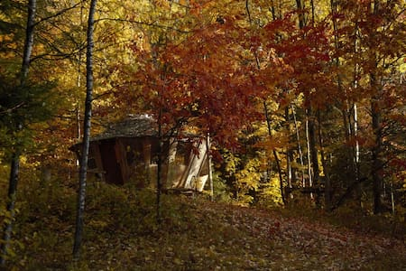 Magical Wooden Yurt - 1hour from Ottawa