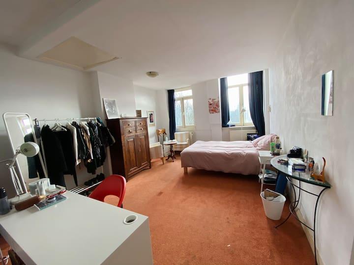 Big and cozy room in De Pijp