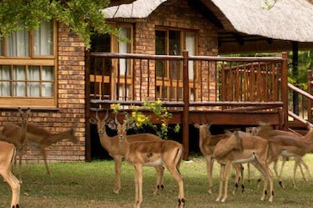 Kruger Park Lodge - Experience Africa - Hazyview - Casa