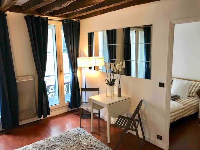 Gorgeous Apartment in the hear of Saint-Germain
