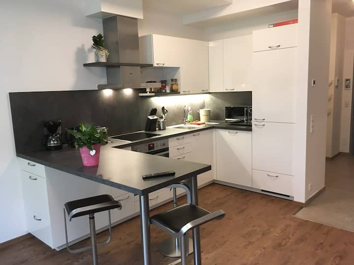 Modern apartment nearby Danube A, D, CZ (Apt.2)