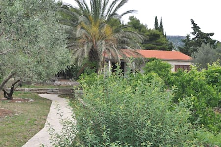 Villa Alma - family and pet friendly - Bol