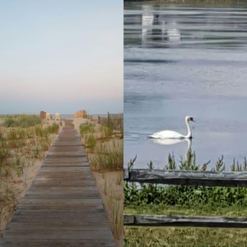 LAKEVIEW & private beach. - Point Pleasant Beach
