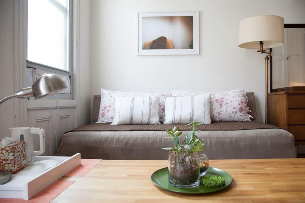 Front/North-facing room   sofa bed