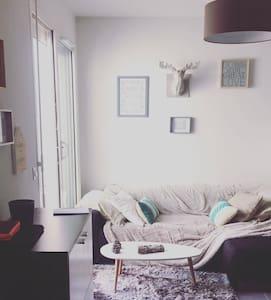 charmant T2 - Toulouse - Apartment