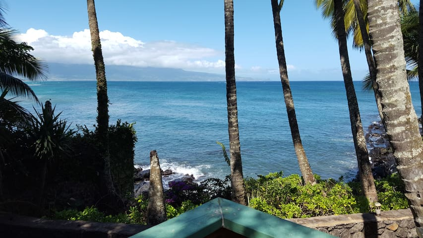 Paia Bay Cottage,  Licensed STPH (PHONE NUMBER HIDDEN) - Paia - Bungaló