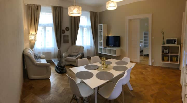 Luxury apartment 4 minutes by Wenceslas square